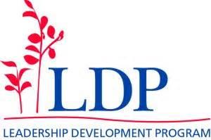 Personal Leadership Development Plan Write my Essay I