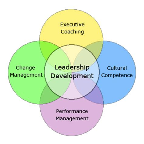 Personal leadership development plan paper